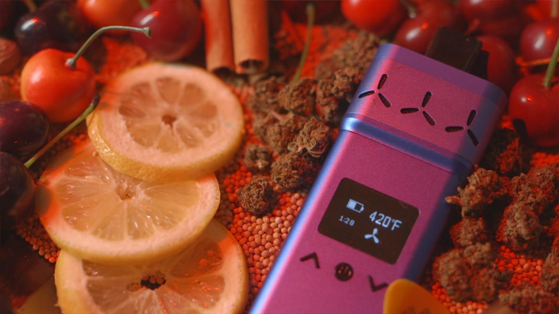 Understanding a dry herb vaporizer